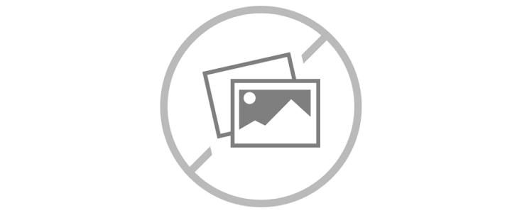 Injector Cannulas