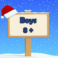 Boys 8+ Wrapped Grotto Toys