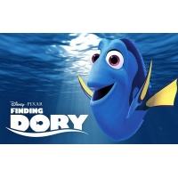 Finding Dory Wholesale